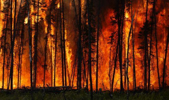 Orman Yangınlarında TPS Modüllerinin Kullanılması