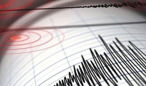 Deprem Tehlikesi Olan Alanlarda Deprem Alarmı ve Afet Yönetimi İçin ICT Kablosuz Sensör Ağlarının Uygulanması